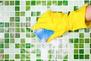 Очищение плитки от плесени