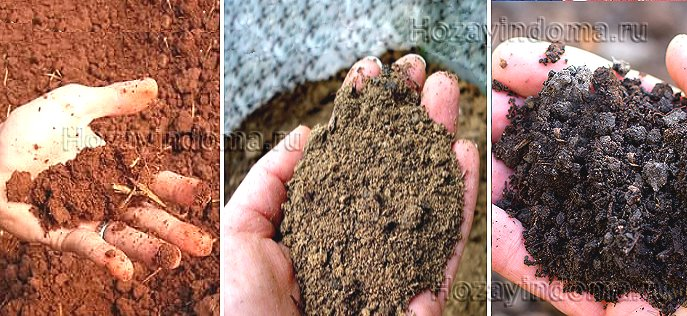 Виды почвы