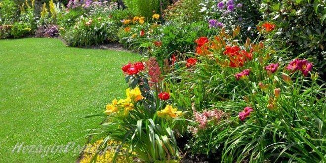 Как выбрать место для посадки растений в саду на даче?