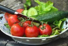 Photo of Как вырастить хороший урожай овощей на даче