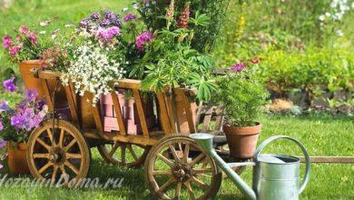 Photo of Сад в деревенском стиле – место для реальной жизни