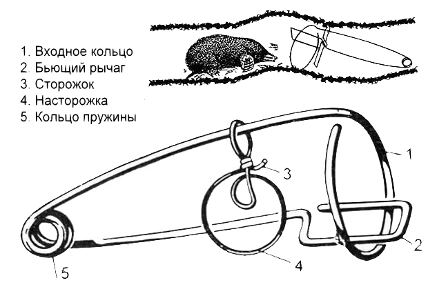 Устройство и принцип работы проволочной механической ловушки